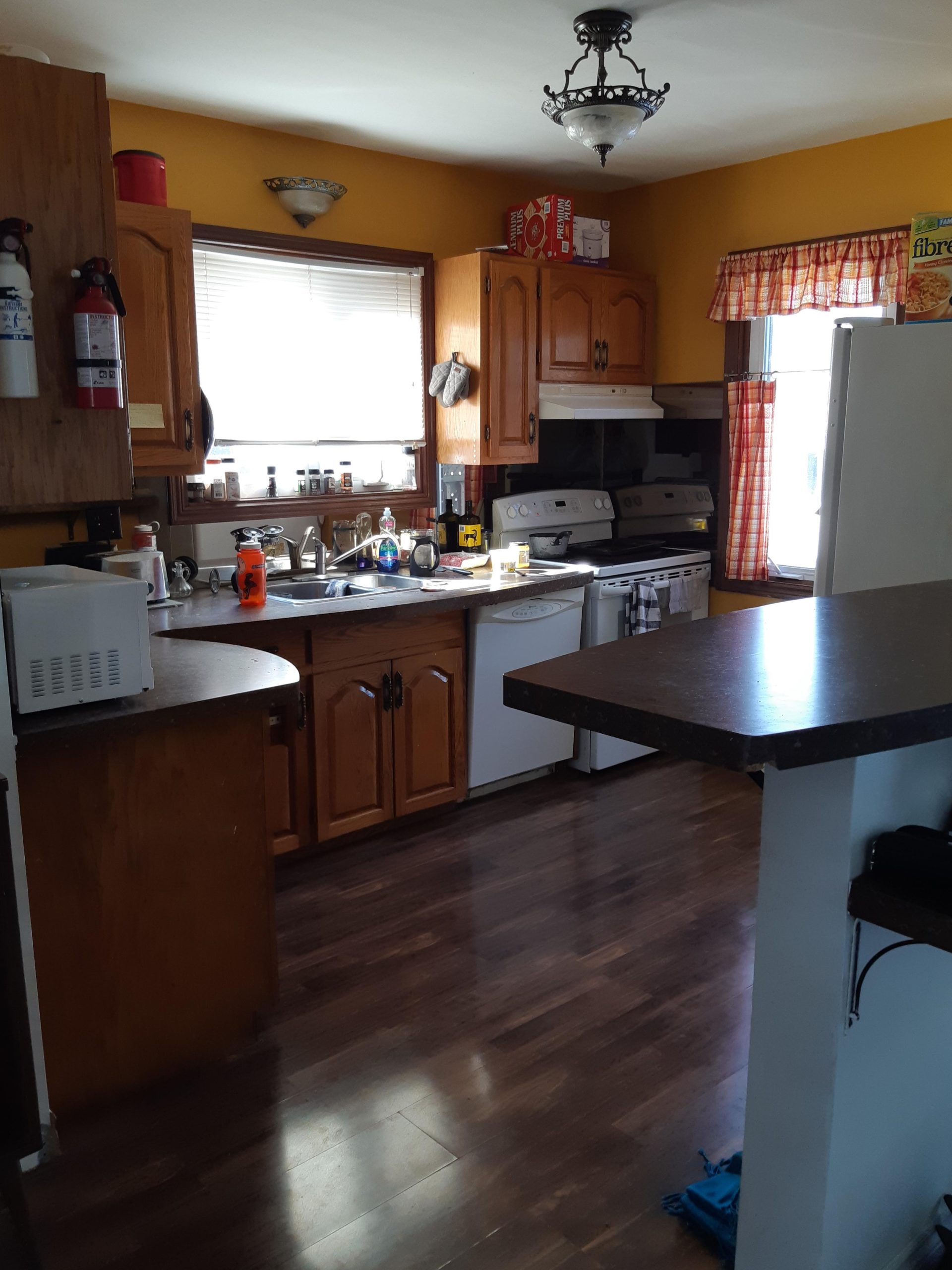 Cozy Room For Rent! 200 Oak St.   RSPM